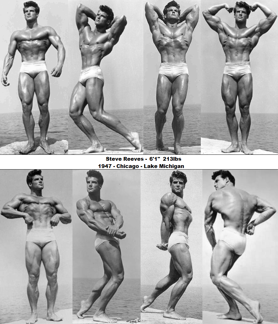 steve reeves chest workout
