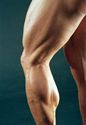 squat-and-lunge-towards-massive-legs-2
